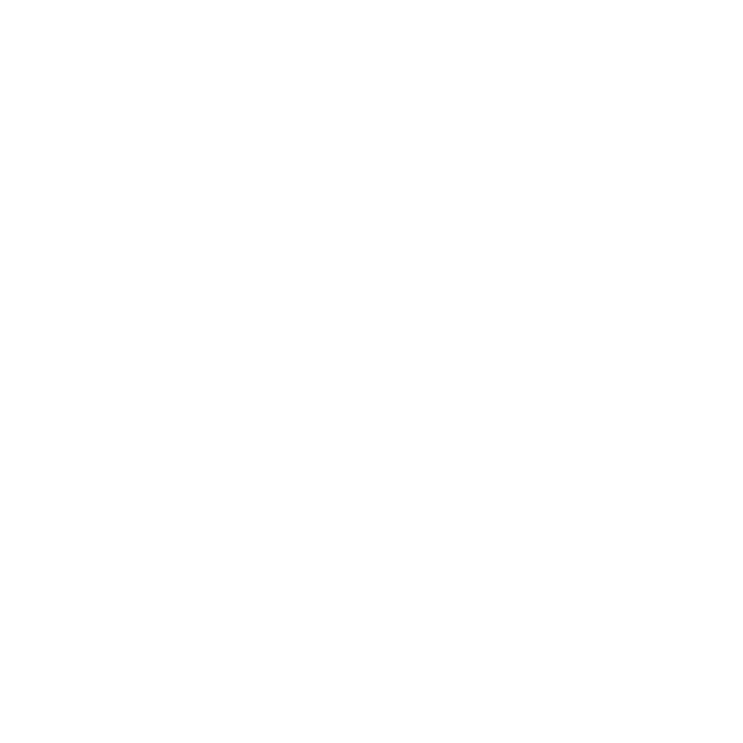 LevelUP_wit_horizontaal